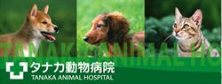 田中動物病院へ