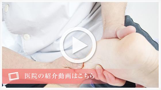 動画リンクボタン