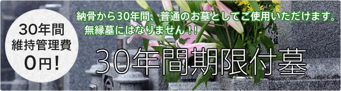 30年間期限付墓