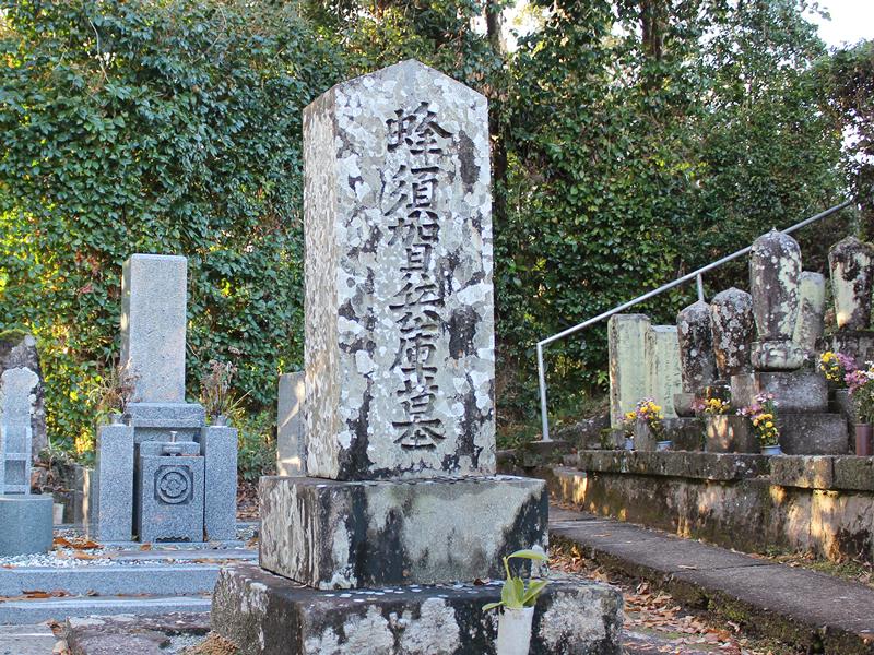 蜂須賀兵庫の墓