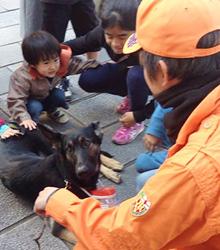 Sunny Dog Schoolトレーナー 岡田匡博(おかだまさひろ)