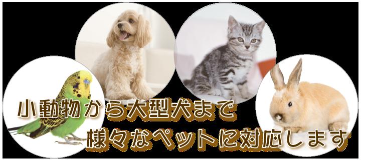 小動物から大型犬まで様々なペットに対応します