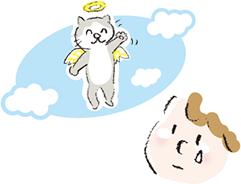 ペット訪問火葬の流れ
