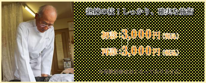 熟練の技!しっかり、確実な施術 初診3000円、再診3000円