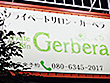 Private salon Gerbera