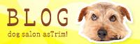 as Trim!のblogへ