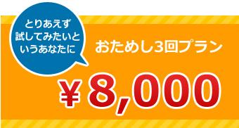 おためし3回プラン ¥8000
