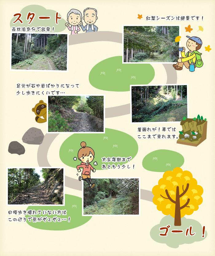 大公孫樹までのミニ・ハイキングコース