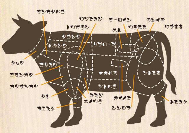 部位 イラスト 牛 イラストで牛肉11部位を説明〜スーパーでお肉の商品名を見てもどこの部位かわからないあなたへ〜