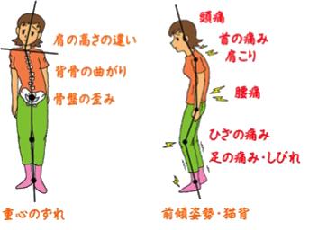 骨格・筋肉の土台からアプローチ